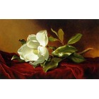 Copie tableaux de peintre Heade001