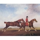 Reproduction de tableaux de peintre Stubbs002