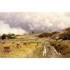 Copie peinture Monsted009