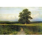 Reproduction d art Shishkin024